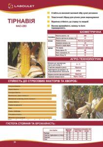 Laboulet2020_corn_tirnavia_30-720x1024