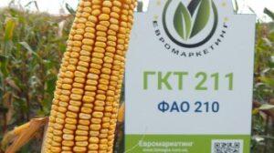 gkt211-1-min-340x190